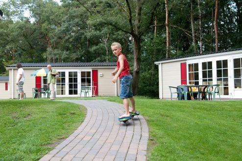 Vakantie In Brabant Altijd Gezellig Bij Roompot Vakanties